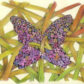 Matolcsi Ildikó - Pillangó
