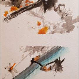 Kövesdi Kriszti - Virág, madár tanulmány